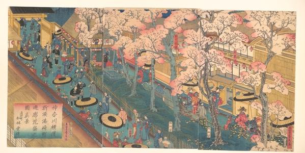 歌川貞秀: True View of the Pleasure Quarters with Cherry Blossoms in Full Bloom in the Miyozki District of the New Port of Yokohama, Kanagawa - メトロポリタン美術館