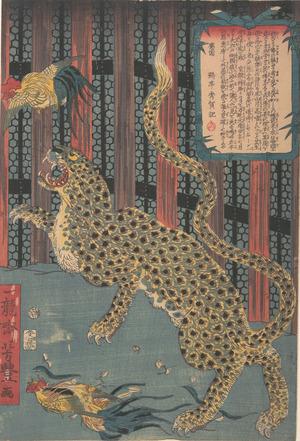 歌川芳豊: Tiger in a Cage - メトロポリタン美術館