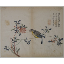 Unknown: Bird on a Flowering Branch - Metropolitan Museum of Art