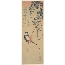 Utagawa Hiroshige: Bird and Wisteria - Metropolitan Museum of Art