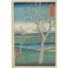 歌川広重: View of Mount Fuji from Koshigaya, Province of Musashi (Musashi, Koshigaya Zai), from the series Thirty-six Views of Mount Fuji (Fugaku sanjûrokkei) - メトロポリタン美術館