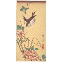 歌川広重: Roses and Sparrow - メトロポリタン美術館