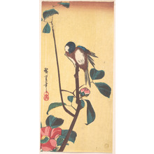 Utagawa Hiroshige: Camellia and Blue-Headed Bird - Metropolitan Museum of Art