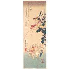 Utagawa Hiroshige: Shrike and Chrysanthemums - Metropolitan Museum of Art