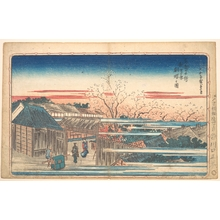 Utagawa Hiroshige: Morning Cherries at Yoshiwara - Metropolitan Museum of Art