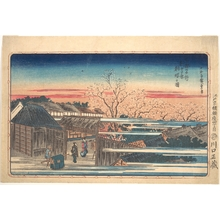 歌川広重: Morning Cherry Blossoms at Shin-Yoshiwara - メトロポリタン美術館