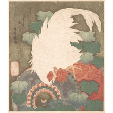 Totoya Hokkei: Cock on Drum - Metropolitan Museum of Art