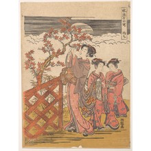 磯田湖龍齋: One of the Seven Komachi: Amagoi (Praying for Rain) - メトロポリタン美術館