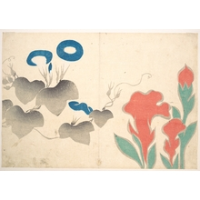 Ogata Kôrin: Design of Morning–glory and Other Flowers - メトロポリタン美術館