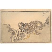 Keisai: Zhe gu - Metropolitan Museum of Art