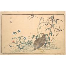 Keisai: Zhu ji - メトロポリタン美術館