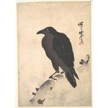 Kawanabe Kyosai: Crow Resting on Wood Trunk - Metropolitan Museum of Art