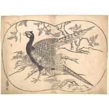 菱川師宣: Pheasants - メトロポリタン美術館