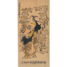 Ishikawa Toyonobu: The Actor Ogino Isaburô as an Itinerant Flower Vendor - Metropolitan Museum of Art
