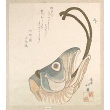 魚屋北渓: Head of a Salmon - メトロポリタン美術館
