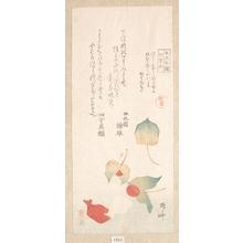 柳々居辰斎: Winter Cherries - メトロポリタン美術館