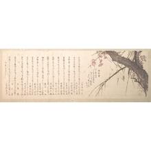 Kubo Shunman: Plum Blossom - Metropolitan Museum of Art