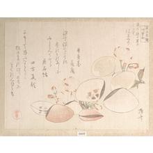 柳々居辰斎: Cherry Blossoms and Shells - メトロポリタン美術館