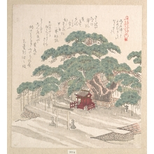 Kubo Shunman: Shrine Under a Big Pine Tree - Metropolitan Museum of Art