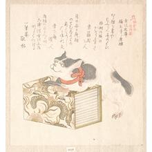 窪俊満: History of Kamakura: Books of the Kanazawa Library and the Cat of the Shomyo-ji Temple - メトロポリタン美術館