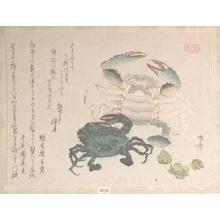 柳々居辰斎: Crabs - メトロポリタン美術館