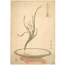 Utagawa Toyohiro: Flower Arrangement of Suisen (Narcissus) in a Flat Green Dish - Metropolitan Museum of Art