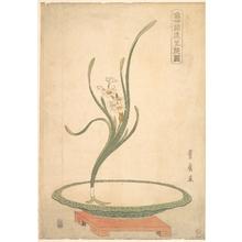 歌川豊広: Flower Arrangement of Suisen (Narcissus) in a Flat Green Dish - メトロポリタン美術館