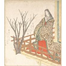 屋島岳亭: Court Lady Looking at a Blooming Cherry-Tree - メトロポリタン美術館