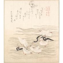 窪俊満: Sea-Gulls Playing on the Water - メトロポリタン美術館