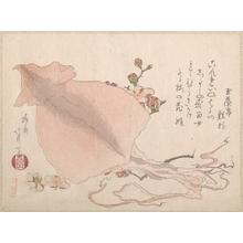 蹄斎北馬: Dried Cuttle-Fish and Plum Blossoms - メトロポリタン美術館