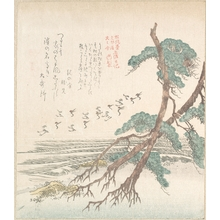 窪俊満: Sea-Side Landscape with Pine Trees and Flying Cranes - メトロポリタン美術館