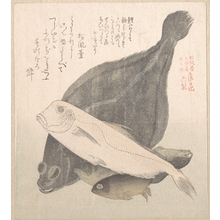 Kubo Shunman: Flounder and Other Fishes - Metropolitan Museum of Art