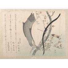 柳々居辰斎: Halibuts and a Bow with Arrow Hanging on a Plum Tree - メトロポリタン美術館