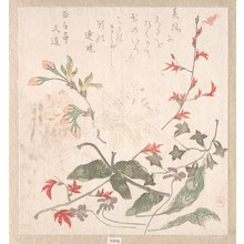 Haikairyo Fukuo: Maple Leaves, Lily, Cherry Flower and Violets - メトロポリタン美術館