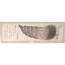 魚屋北渓: Young Shoot of Bamboo - メトロポリタン美術館