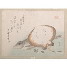 柳々居辰斎: Stingray and Gurnard - メトロポリタン美術館