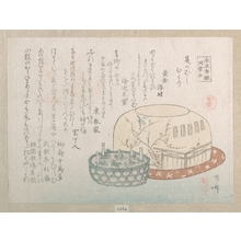 Ryuryukyo Shinsai: Insect Catcher and Potted Herbs - Metropolitan Museum of Art