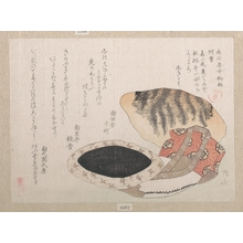 Ryuryukyo Shinsai: Cushion, Short Coat and Fur of Tiger - Metropolitan Museum of Art