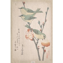 Kubo Shunman: Japanese