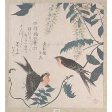 窪俊満: Swallows and Wisteria - メトロポリタン美術館