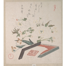 窪俊満: Cherry Blossoms and Seal-box with Ink and Ruler - メトロポリタン美術館