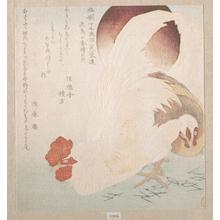 魚屋北渓: Rising Sun and Cock and Hen - メトロポリタン美術館
