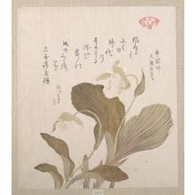 Kubo Shunman: Hotei Flowers - Metropolitan Museum of Art