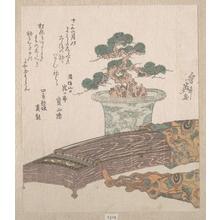 Keisai Eisen: Potted Pine Tree and Koto (Japanese Harp) - Metropolitan Museum of Art