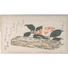 Ryuryukyo Shinsai: Camelia Flower and Yokan (a sort of bean jelly) Wrapped in Bamboo Skin - Metropolitan Museum of Art