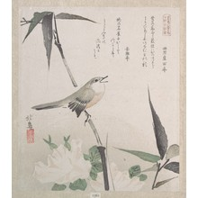 Teisai Hokuba: Roses and Bamboo with Nightingale - Metropolitan Museum of Art