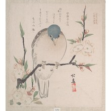 Teisai Hokuba: Dove and Peach Flowers - Metropolitan Museum of Art
