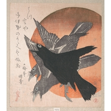 Totoya Hokkei: Three Crows Against the Rising Sun - Metropolitan Museum of Art
