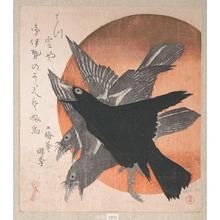 Totoya Hokkei: Three Crows Against the Rising Sun - Metropolitan Museum of Art