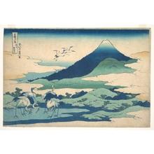 葛飾北斎: Umezawa Manor in Sagami Province (Sôshû Umezawa zai), from the series Thirty-six Views of Mount Fuji (Fugaku sanjûrokkei) - メトロポリタン美術館